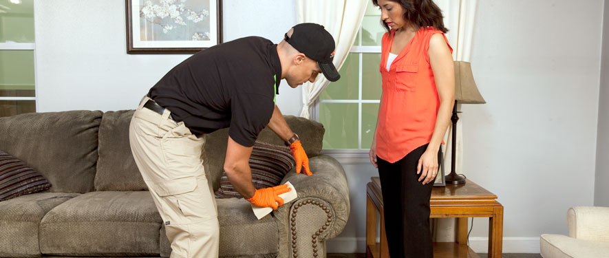 Bloomington, IL carpet upholstery cleaning